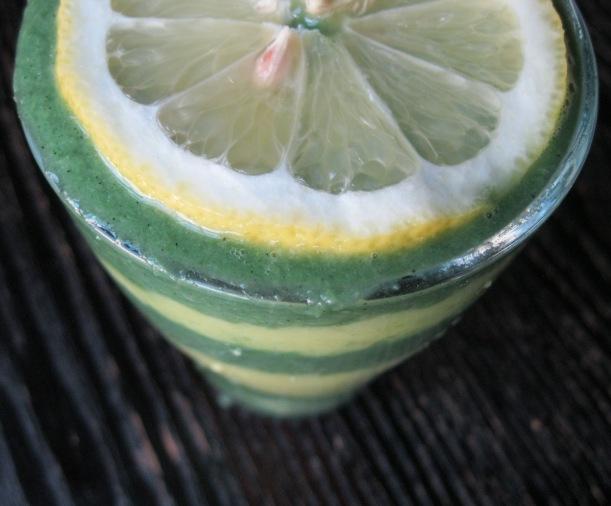 lemon mango 030